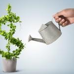 Como analisar a rentabilidade de seus produtos ou serviços?