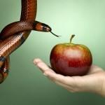 Os pecados capitais da gestão de vendas que você deve evitar a todo custo!